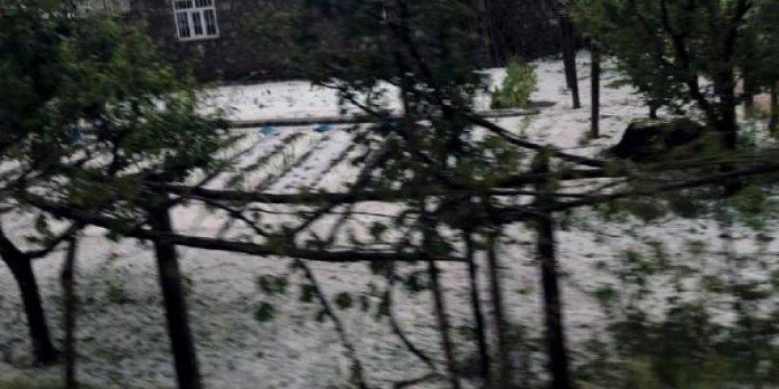 Bölgemiz 'de dolu yağışı etkili oldu