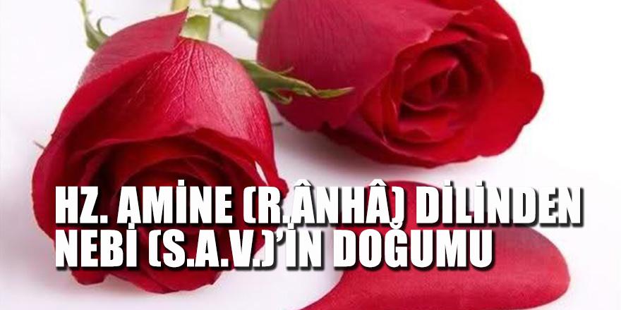 Hz. Amine (R.Ânhâ) Dilinden Nebi (S.A.V.)'İn Doğumu