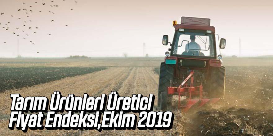 Tarım Ürünleri Üretici Fiyat Endeksi, Ekim 2019
