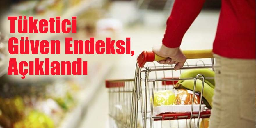 Tüketici Güven Endeksi, Açıkalndı