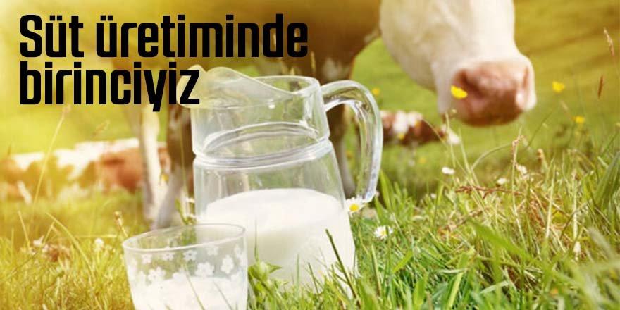 Konya süt üretiminde birinci oldu