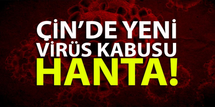 Hanta virüsü nedir?