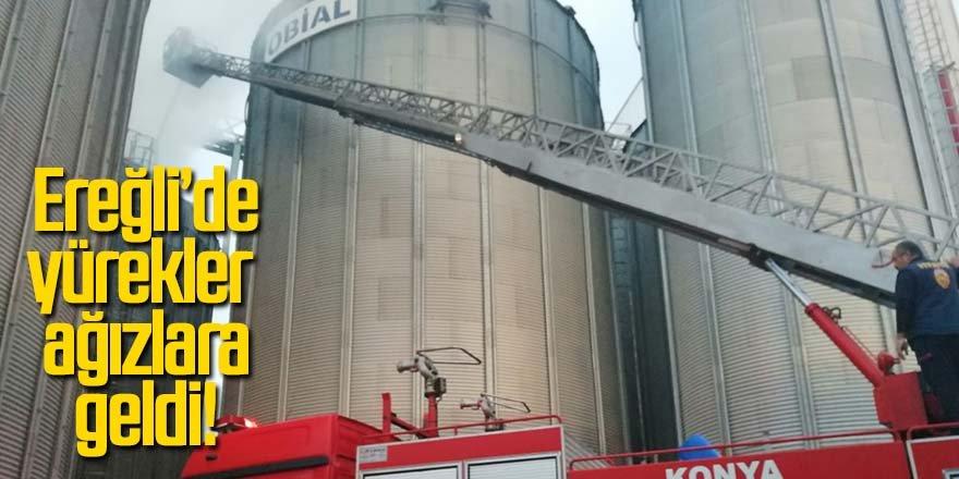 Ereğli'de yem fabrikasında yangın