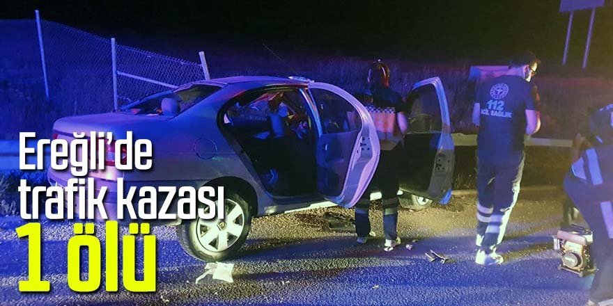 Bariyerlere çarpan otomobilin sürücüsü hayatını kaybetti