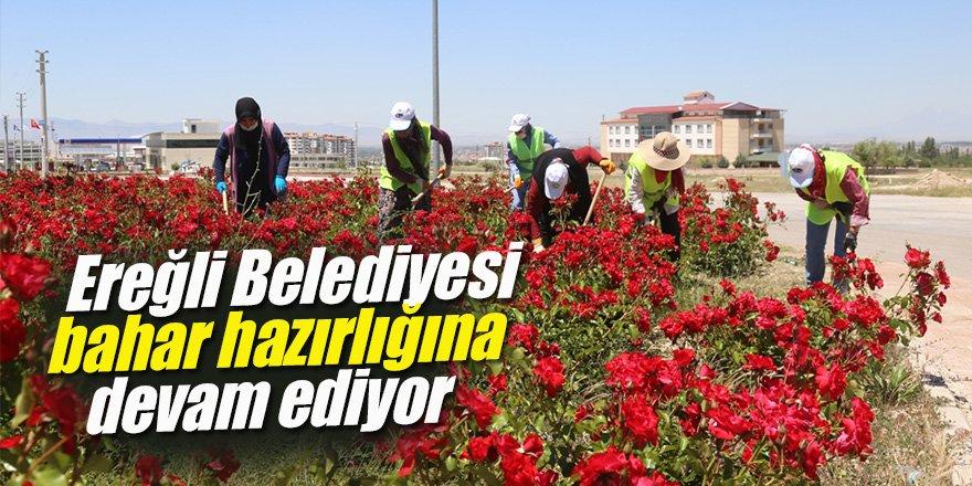 Ereğli Belediyesi bahar hazırlığına devam ediyor