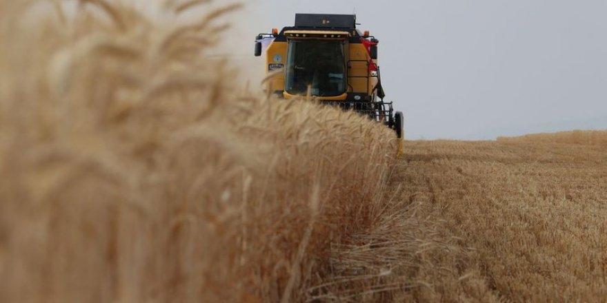 Tarım ürünleri üretici fiyat endeksi (Tarım-ÜFE) yıllık %10,59, aylık %0,88 arttı