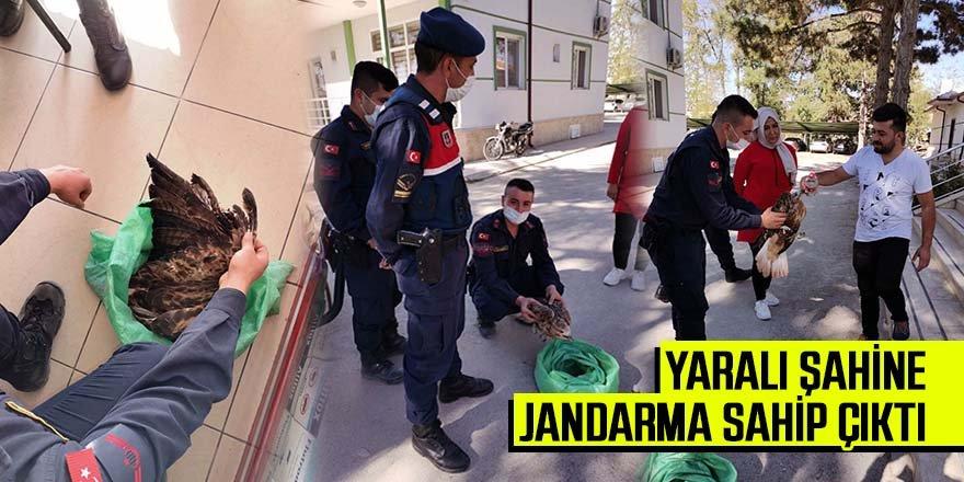 Yaralı Şahin'e Jandarma Şevkati