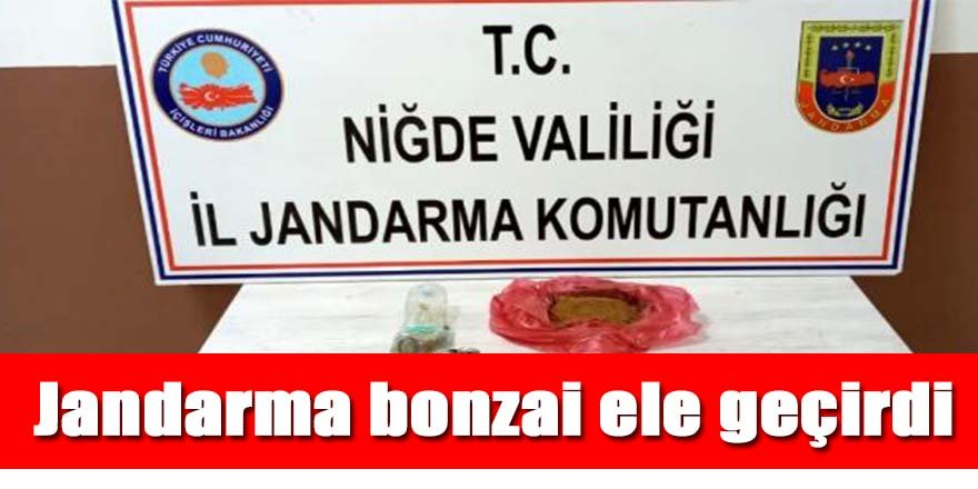 Jandarma 700 gram bonzai ele geçirdi