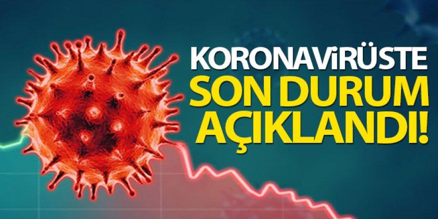 Türkiye'de son 24 saatte 8.314 koronavirüs vakası tespit edildi