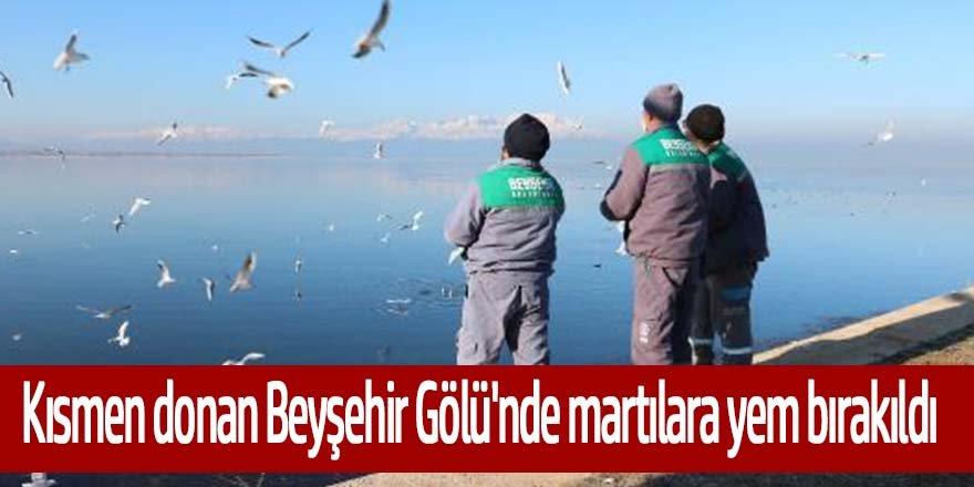 Kısmen donan Beyşehir Gölü'ne martılar için yem bırakıldı