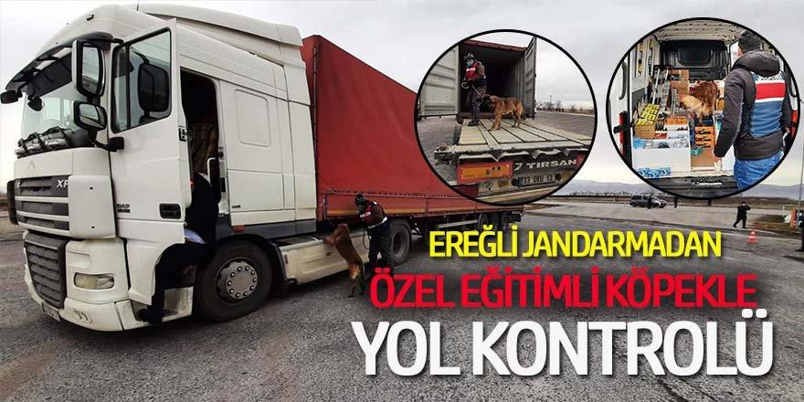 EREĞLİ'DE JANDARMADAN ŞOK UYGULAMA