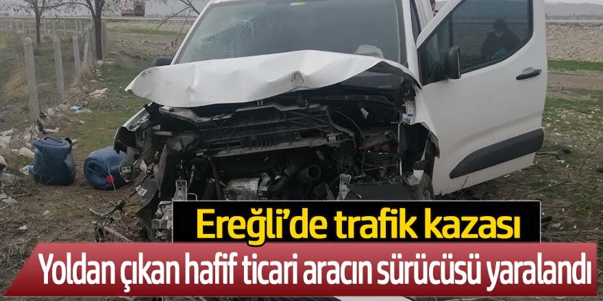 Yoldan çıkan hafif ticari araç, ağaca çarptı sürücüsü yaralandı