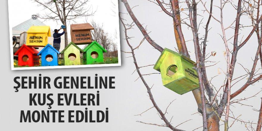 Şehir Geneline Kuş Evleri Monte Edildi