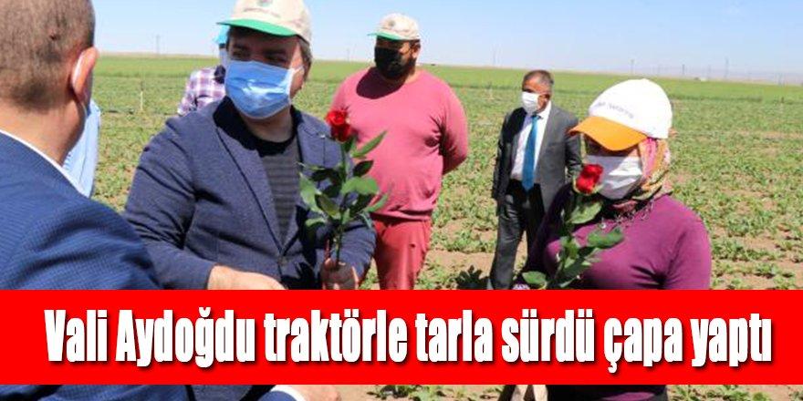 Vali Aydoğdu traktörle tarla sürdü çapa yaptı