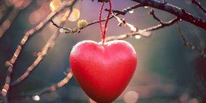 Aşkla Yükselen Hormonlar Sağlığı Koruyor