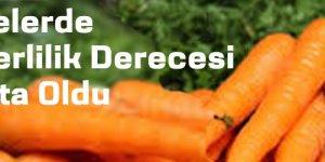 Sebzelerde En Yüksek Yeterlilik Derecesi Havuçta Oldu