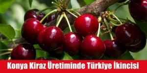 Konya Kiraz Üretiminde Türkiye İkincisi Oldu