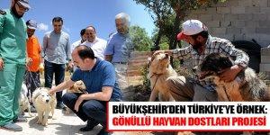 Büyükşehir'den Türkiye'ye Örnek: Gönüllü Hayvan Dostları Projesi