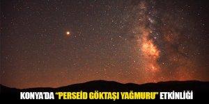 """Konya'da """"Perseid Göktaşı Yağmuru"""" Etkinliği"""