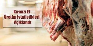 Türkiye`de kırmızı et üretimi artmaya başladı!