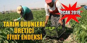Tarım Ürünleri Üretici Fiyat Endeksi, Ocak 2019