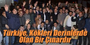 Akyürek: Türkiye, Kökleri Derinlerde Olan Bir Çınardır