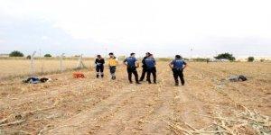 İki genç, mısır tarlasında baygın bulundu