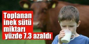 Toplanan inek sütü miktarı Eylül'de yüzde 7.3 azaldı