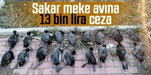 Sakar Meke avcısına 13 bin 526 lira ceza
