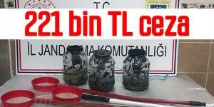 Sülük avcılarına 221 bin TL ceza