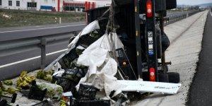 Meyve yüklü kamyonet devrildi: 1 yaralı