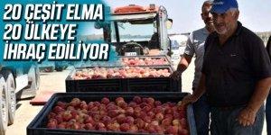20 Çeşit Elma, 20 Ülkeye İhraç Ediliyor