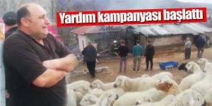 Muhtar Koyunları telef olan ve evi yanan aile için yardım kampanyası başlattı