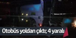 Tipi ve buzlanma nedeniyle yolcu otobüsü yoldan çıktı; 4 yaralı