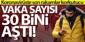 Türkiye'de son 24 saatte 30.021 koronavirüs vakası tespit edildi
