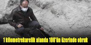 1 kilometrekarelik alanda 100'ün üzerinde obruk tespit edildi