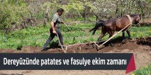 Halkapınar'da patates ve fasulye ekimi başladı