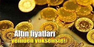 Altın fiyatları yeniden yükselişte!