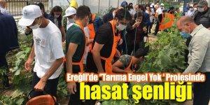 Ereğli'de ''Tarıma Engel Yok ' Projesinde hasat şenliği